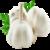 Garlic Benefits  app for free