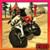 MONSTER BIKE RACER icon