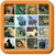 Onet Fish And Wildlife app for free