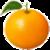 Benefits of Oranges icon