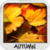 Autumn Wallpapers Free app for free