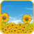 Sunflower Field Live Wallpaper app for free