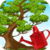 Bonsai Tree Care icon