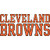 Cleveland Browns Fan icon