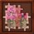 Jigsaw Pakaian Adat icon