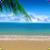 Beautiful Summer Live Wallpaper HD icon