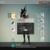 Destiny Gameplay Walkthrough app for free