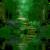 Secret Forest Live Wallpaper app for free