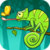 Chameleon: Catch The Fly icon
