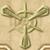Unlocking 2 icon