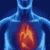 Cure for Heart Disease icon