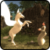 Unicorn Simulator 3D app for free
