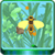 Tappy Bee Journey app for free