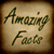 Amazing Facts 240x320 Touch icon