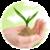 Precautions while using Pesticides icon
