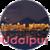 Udaipur icon