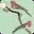 Parakeets HD Live Wallpaper icon