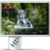 Waterfall Nature Live Wallpaper VD icon