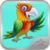 My Talking Parrot app for free