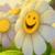 Make Me Happy Today icon