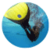 Rules to play Finswimming icon