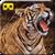 VR Visit Animals Jungle Adventure  app for free