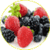 Antioxidant foods rich  app for free