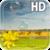 Summer Landscape LWP app for free
