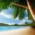 Live Beach Wallpaper app for free