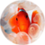 Clownfish LWP app for free