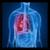 Bronchitis app for free