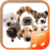 Dog sounds app app for free
