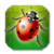 Garden Bug Smasher icon