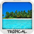 Tropical Wallpapers free app for free