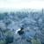 Assassins Creed Unity Walkthrough app for free