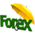 Forex Trading Focust icon