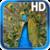 Birds Peacock Live Wallpaper app for free