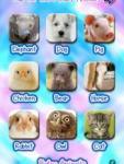 Baby Animals for Kids screenshot 1/1
