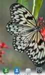 Butterflies Live  Wallpaper  screenshot 1/4