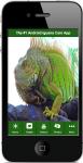 Iguana Care 2 screenshot 1/4