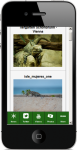 Iguana Care 2 screenshot 4/4