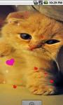Cute Kitty cat Live Wallpaper screenshot 1/4
