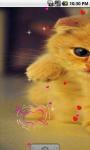 Cute Kitty cat Live Wallpaper screenshot 2/4