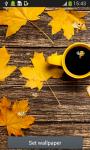 Autumn Leaves Live Wallpapers screenshot 1/6
