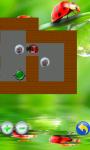 Beetle and Eggs screenshot 3/5