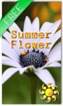 Summer Flower HD LWP screenshot 1/2