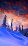 Winter Christmas Live Wallpaper screenshot 1/3
