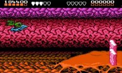 Battle Toads Premium screenshot 4/4