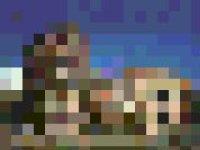 MMS-FX Pixelate screenshot 1/1