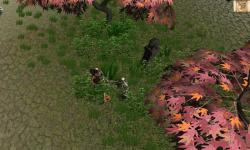 The Lost Island screenshot 4/6